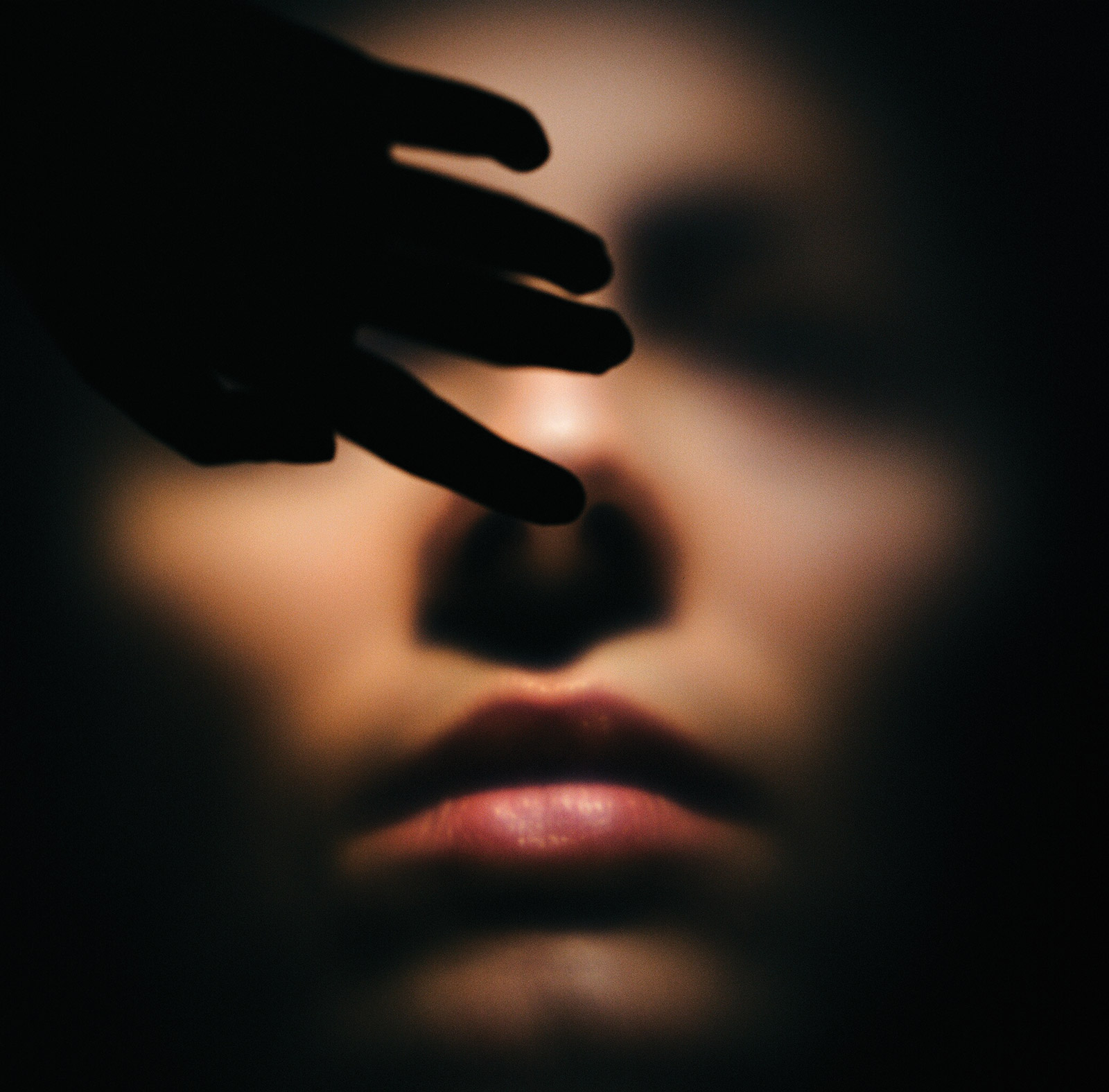LA SEMILLA DE LA IMAGEN I serie II. Fotografía analógica, 2009