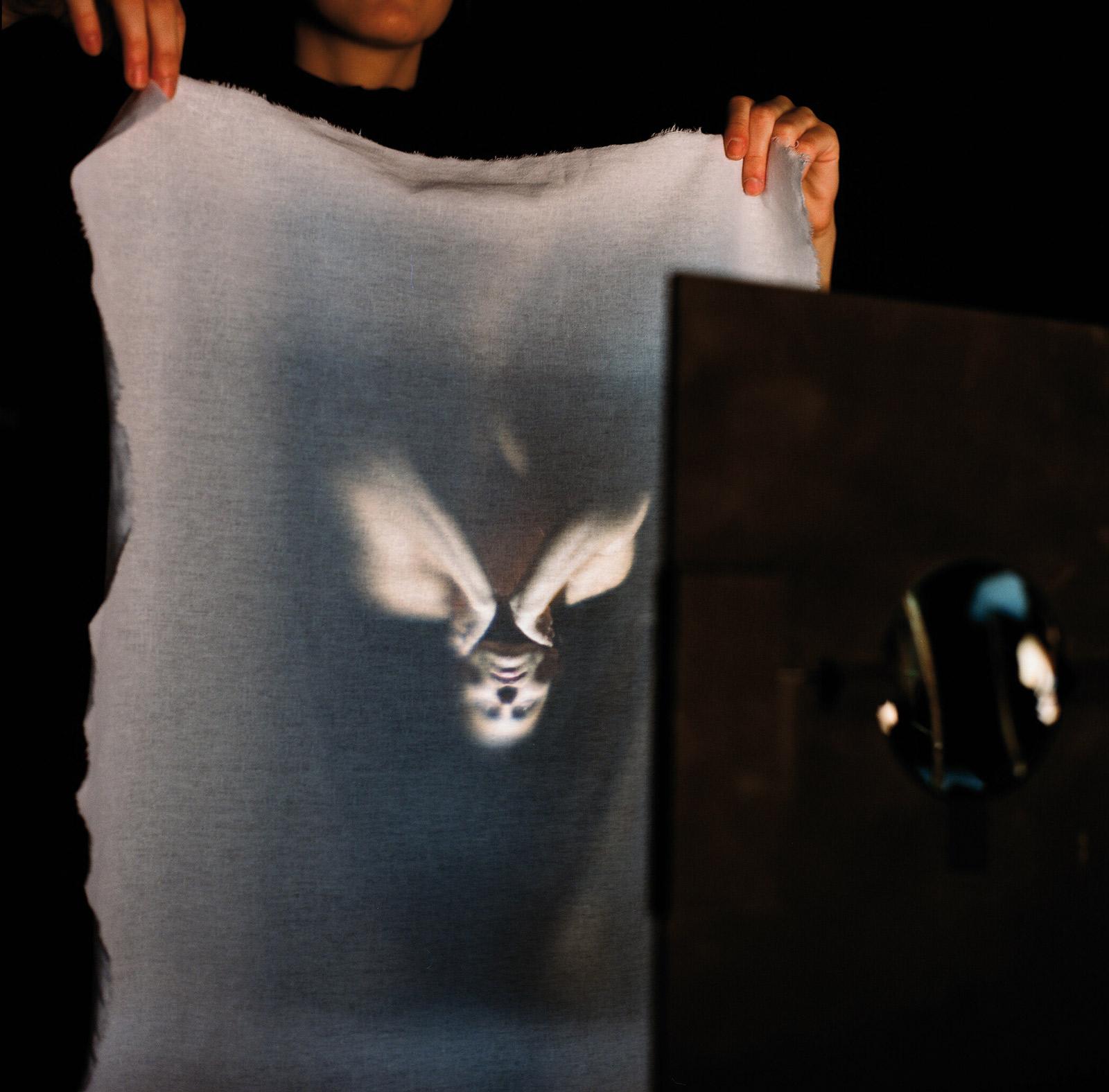 LA SEMILLA DE LA IMAGEN XI serie II. Fotografía analógica, 2009