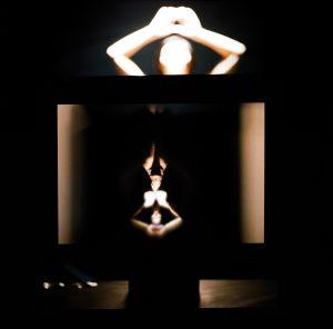 LA SEMILLA DE LA IMAGEN IXX serie I. Fotografía analógica, 2009 thumb