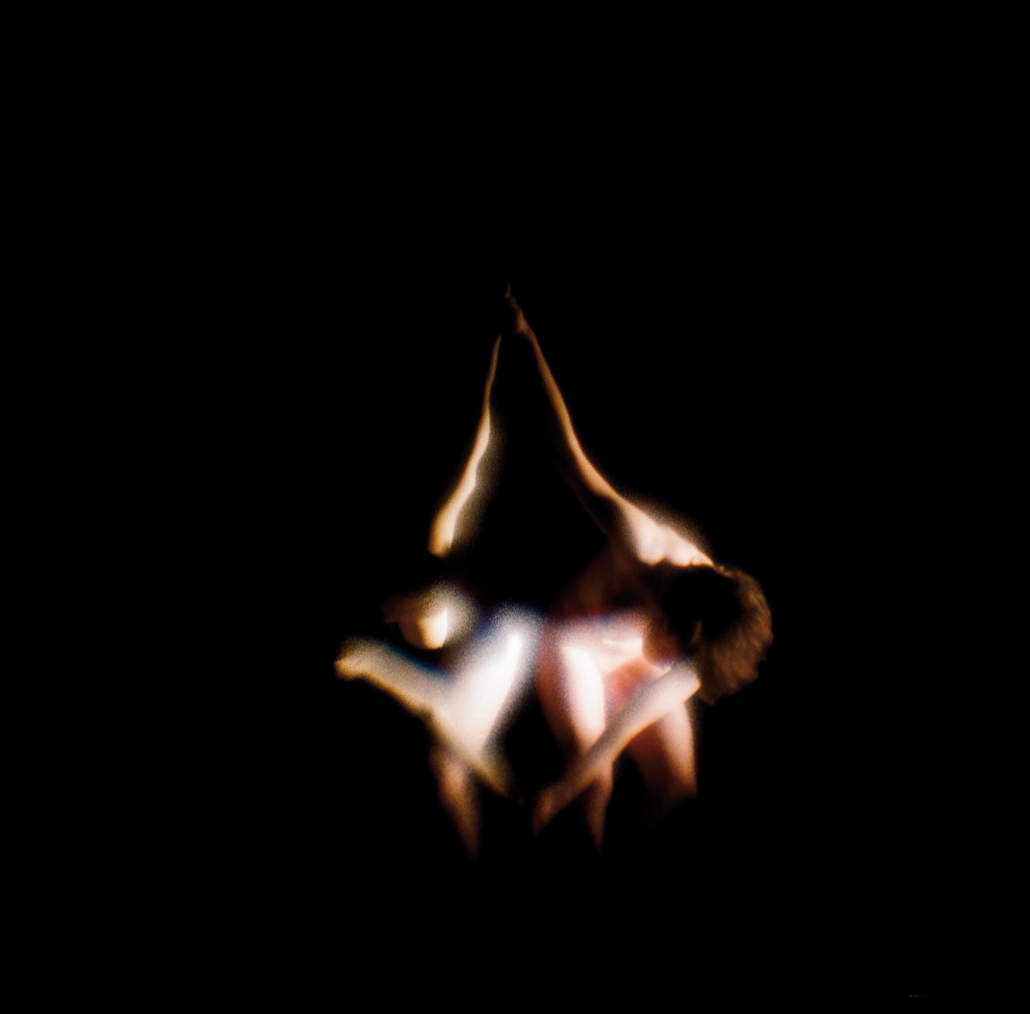 LA SEMILLA DE LA IMAGEN XXI serie I. Fotografía analógica, 2009