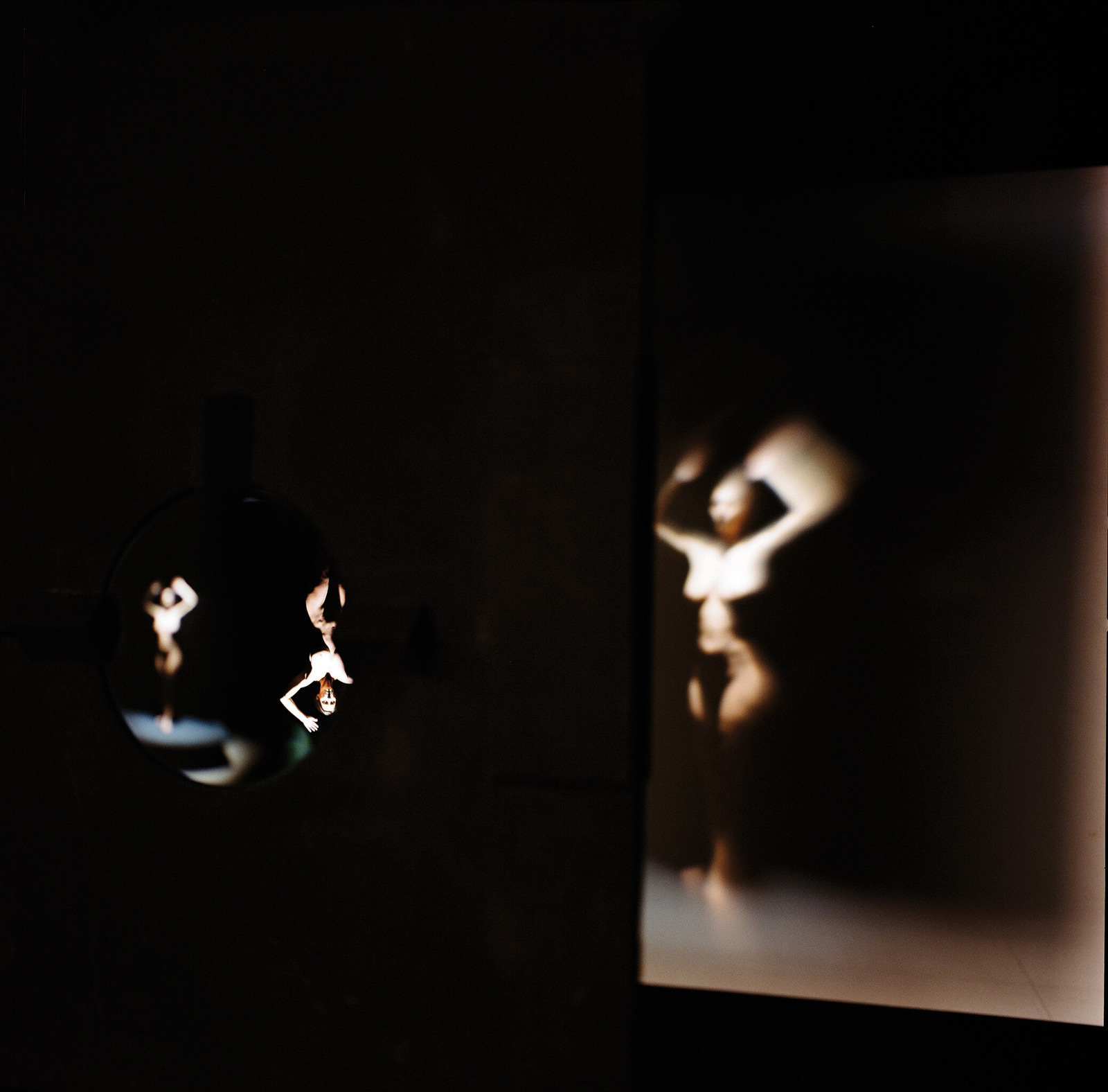 LA SEMILLA DE LA IMAGEN XXXII serie I. Fotografía analógica, 2009