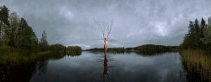 KÄÄNNA JUURI II. Fotografía y retoque digital. Lago Ahmausjarvi, Hämeenkyrö, Finlandia thumb