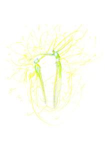 Image 5 thumb