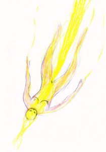 Image 6 thumb
